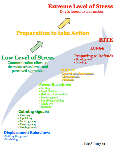 Escalada de estrés
