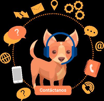 Contacto educador canino