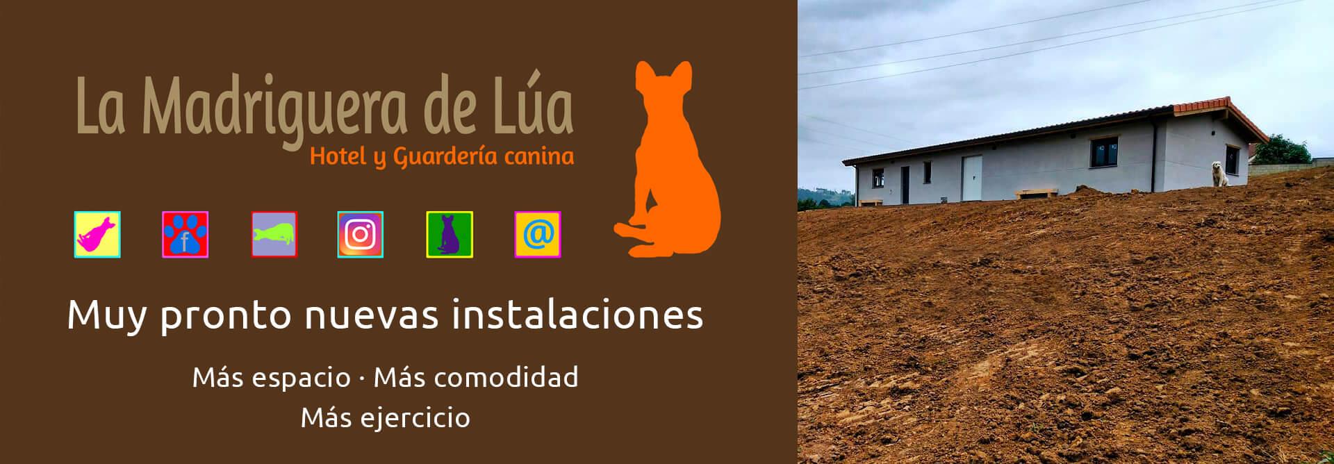 Guardería Canina Oviedo